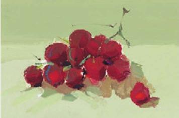 色彩葡萄的画法(3)