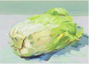 色彩大白菜的画法(4)