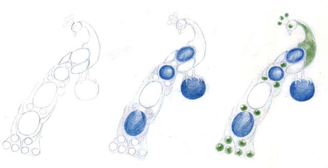 宝石孔雀胸针怎么画(1)