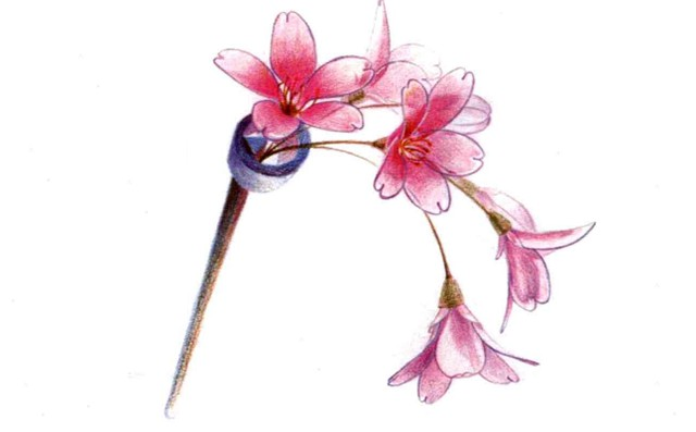 儿童花朵发簪怎么画(4)